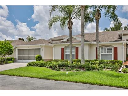 1127 CORINTH GREENS DR, Sun City Center, FL