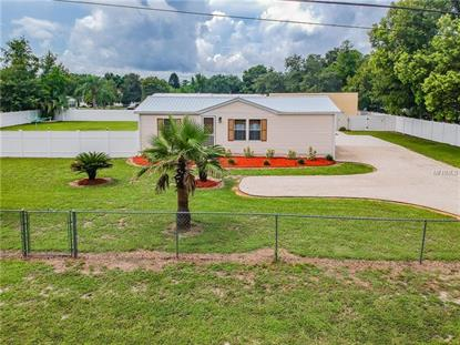 34320 CHANCEY RD, Wesley Chapel, FL