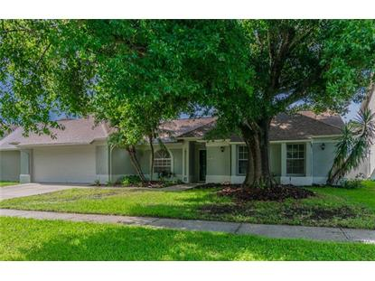 9733 CYPRESS POND AVE, Tampa, FL