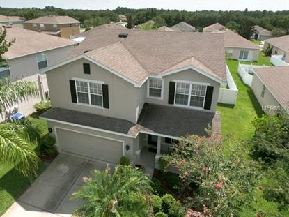 6043 BLUE SAGE DR, Land O Lakes, FL