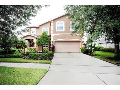 6222 BRIDGEVISTA DR Lithia, FL MLS# T3124898