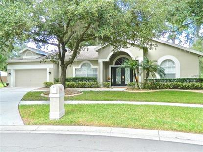 9627 NORCHESTER CIR Tampa, FL MLS# T3125589