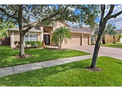 8264 SWANN HOLLOW DR Tampa, FL MLS# T3130477
