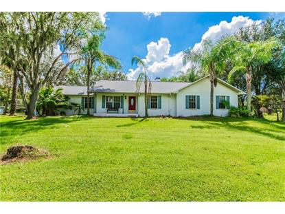13523 THONOTOSASSA RD Dover, FL MLS# T3133890
