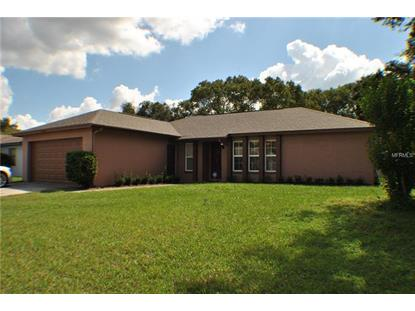 11213 GARFIELD CT Seffner, FL MLS# T3134997