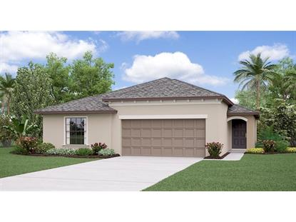 10004 ROSE PETAL PL, Riverview, FL