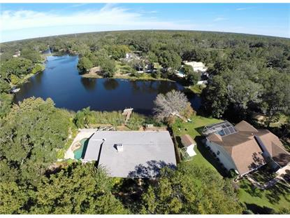 516 WHITAKER RD Lutz, FL MLS# T3140242