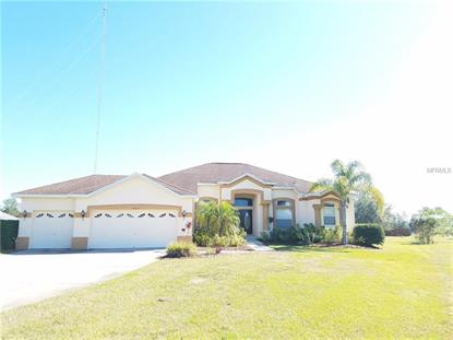 14219 CREEK RUN DR, Riverview, FL
