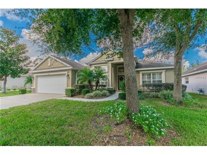15513 STARLING WATER DR Lithia, FL MLS# T3141114