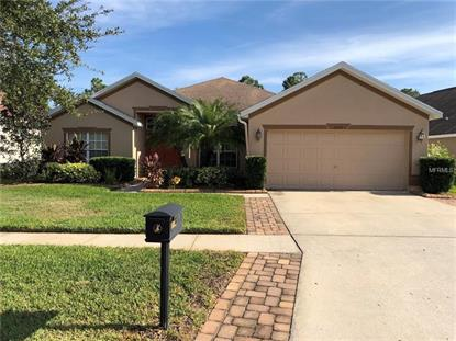 16527 BRIDGEWALK DR Lithia, FL MLS# T3144564