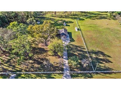 7649 TALLOWTREE DR Wesley Chapel, FL MLS# T3145400