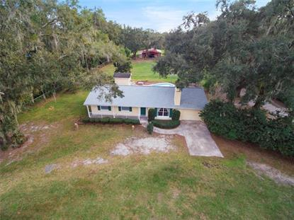 7450 ALAFIA RIDGE LOOP Riverview, FL MLS# T3145904