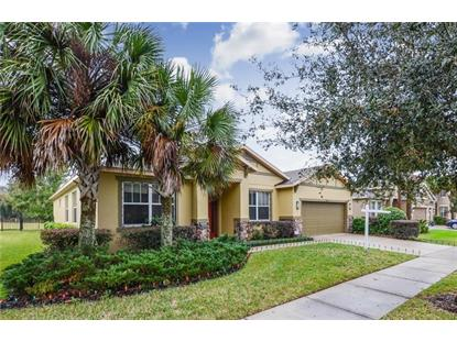 15715 STARLING WATER DR Lithia, FL MLS# T3146283