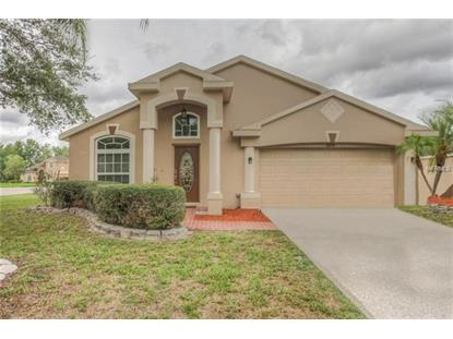 1208 TIMBER TRACE DR Wesley Chapel, FL MLS# T3146307