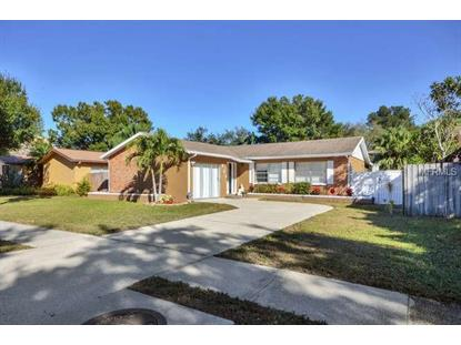 1813 ELAINE DR Clearwater, FL MLS# T3146349