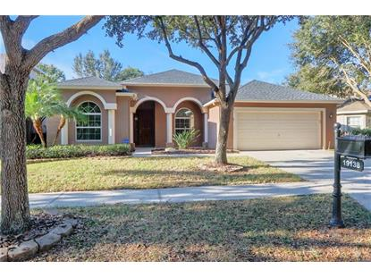19138 DOVE CREEK DR Tampa, FL MLS# T3146474