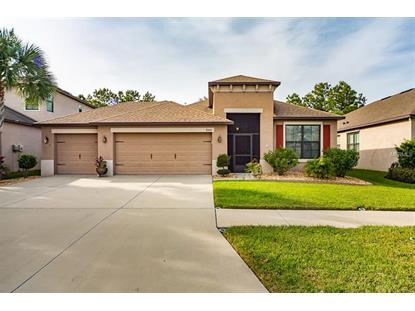 8444 WHITE POPLAR DR Riverview, FL MLS# T3146646