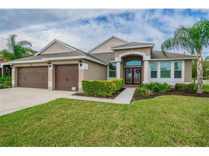 13601 ARTESA BELL DR Riverview, FL MLS# T3146766