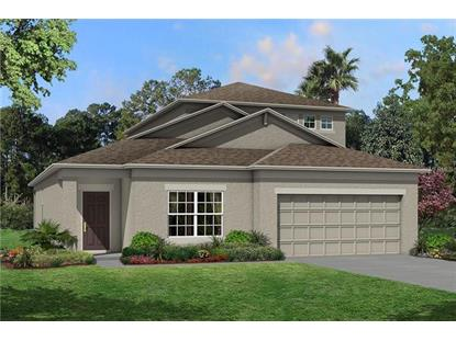 11422 AMAPOLA BLOOM CT Riverview, FL MLS# T3146810