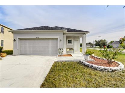8234 SUMMER WOOD LN Riverview, FL MLS# T3146863