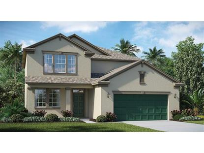 13923 SNOWY PLOVER LN Riverview, FL MLS# T3147085