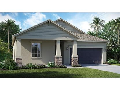 13921 SNOWY PLOVER LN Riverview, FL MLS# T3147094