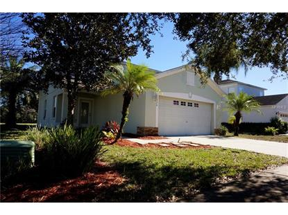 12320 CANYON BLVD Spring Hill, FL MLS# T3149945