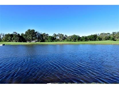 1323 MISTY GREENS DR Sun City Center, FL MLS# T3150214