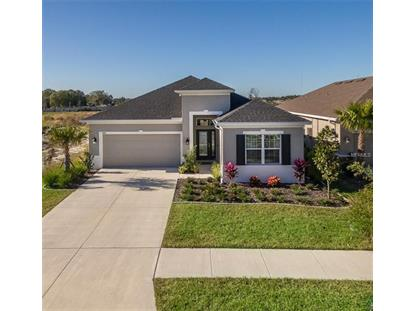 17615 BRIGHT WHEAT DR Lithia, FL MLS# T3151131