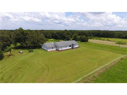 5362 WOOD RD Lithia, FL MLS# T3151166