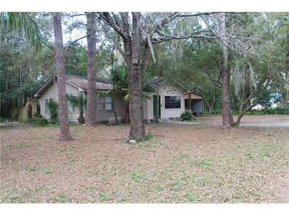 6506 N WOODLYNNE AVE Tampa, FL MLS# T3151289