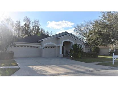 25804 SANTOS WAY Wesley Chapel, FL MLS# T3151872