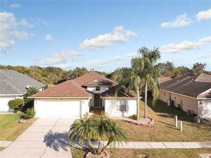 10286 OASIS PALM DR Tampa, FL MLS# T3151912