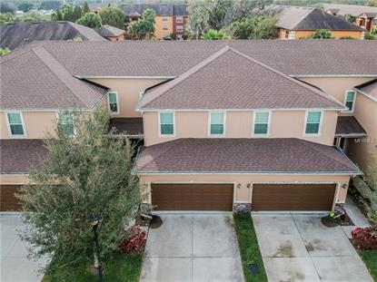 8613 ANDALUCIA FIELD DR Temple Terrace, FL MLS# T3152425