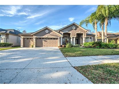 19512 FRENCH LACE DR Lutz, FL MLS# T3156961