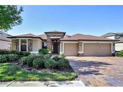 19412 SWEET GRASS WAY Lutz, FL MLS# T3208513