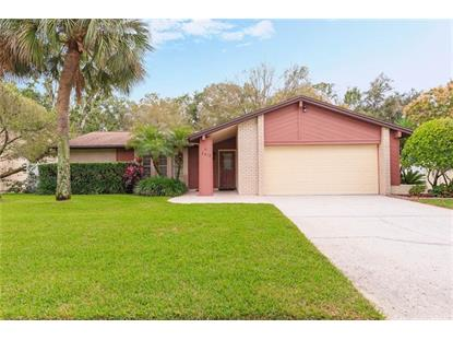 2419 BLIND POND AVE Lutz, FL MLS# T3209095