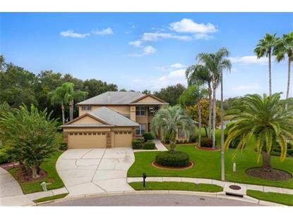 6119 CHENE CT Lutz, FL MLS# T3209190