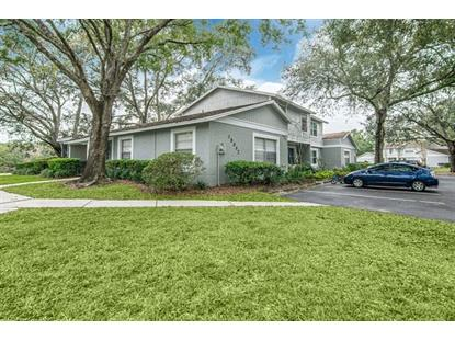15302 MORNING DR Lutz, FL MLS# T3210255