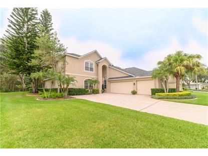 18912 SAINT LAURENT DR Lutz, FL MLS# T3210300