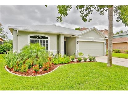 19351 SANDY SPRINGS CIR Lutz, FL MLS# T3210489