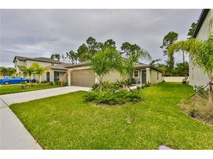 7074 EMERALD SPRING LOOP New Port Richey, FL MLS# T3272016
