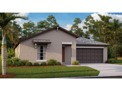 6437 SPIDER LILY WAY New Port Richey, FL MLS# T3272395