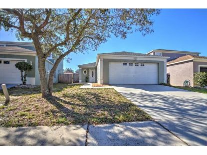 1005 HARVEST MOON DR Seffner, FL MLS# T3285672
