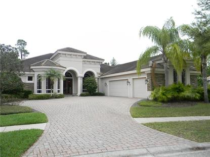 waterchase fl real estate homes for sale in waterchase