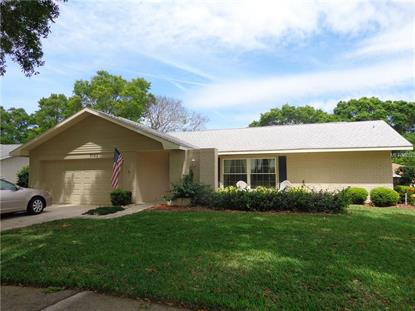 3153 BRUNSWICK CIR, Palm Harbor, FL