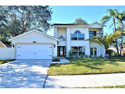 1207 LAWNSIDE AVE, Safety Harbor, FL