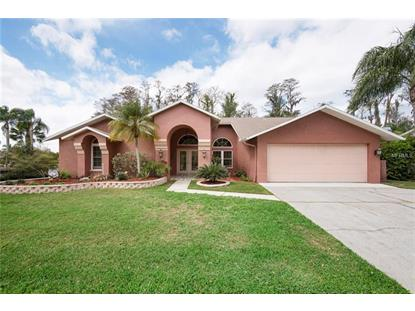 365 HOLLY HILL RD, Oldsmar, FL