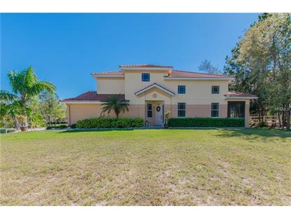 1426 HIDDEN CT, Tarpon Springs, FL