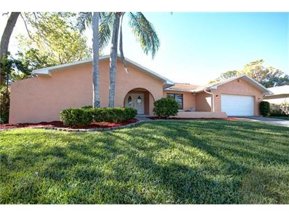 1418 INDIAN TRL S, Palm Harbor, FL